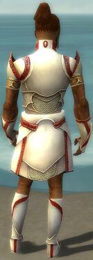 Paragon Asuran Armor M dyed back