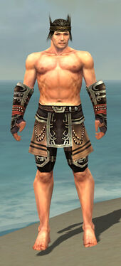 Warrior Ancient Armor M gray arms legs front