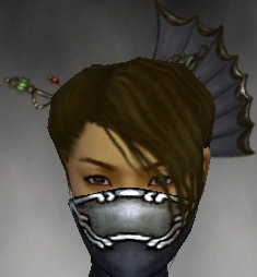 File:Assassin Asuran Armor F gray head front.jpg