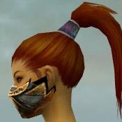 File:Assassin Elite Exotic Armor F gray head side.jpg