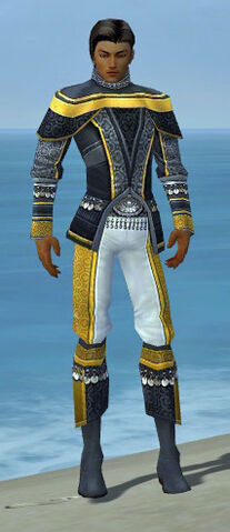 File:Elementalist Luxon Armor M dyed front.jpg