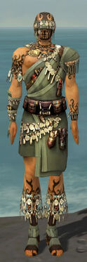 Ritualist Canthan Armor M gray front