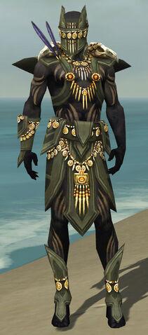 File:Ritualist Elite Kurzick Armor M gray front.jpg