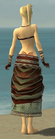 File:Ritualist Exotic Armor F gray arms legs back.jpg