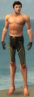 Mesmer Asuran Armor M gray arms legs front
