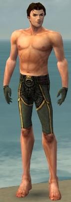 File:Mesmer Asuran Armor M gray arms legs front.jpg