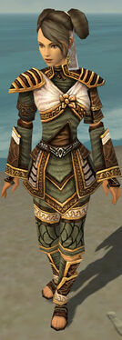 Monk Elite Canthan Armor F gray front