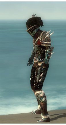 File:Necromancer Norn Armor M gray side.jpg