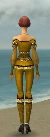 File:Mesmer Luxon Armor F dyed back.jpg