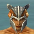 Warrior Templar Armor M dyed head front