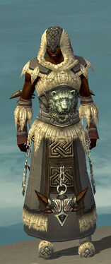 Dervish Norn Armor M gray front