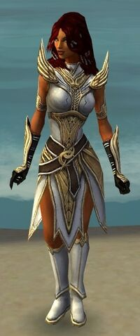 File:Hayda Armor Brotherhood Front.jpg