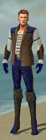 File:Mesmer Enchanter Armor M dyed front.jpg