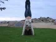 Blog handstand