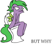 8826 - but why pegaspike pegasus spike toilet why.jpg