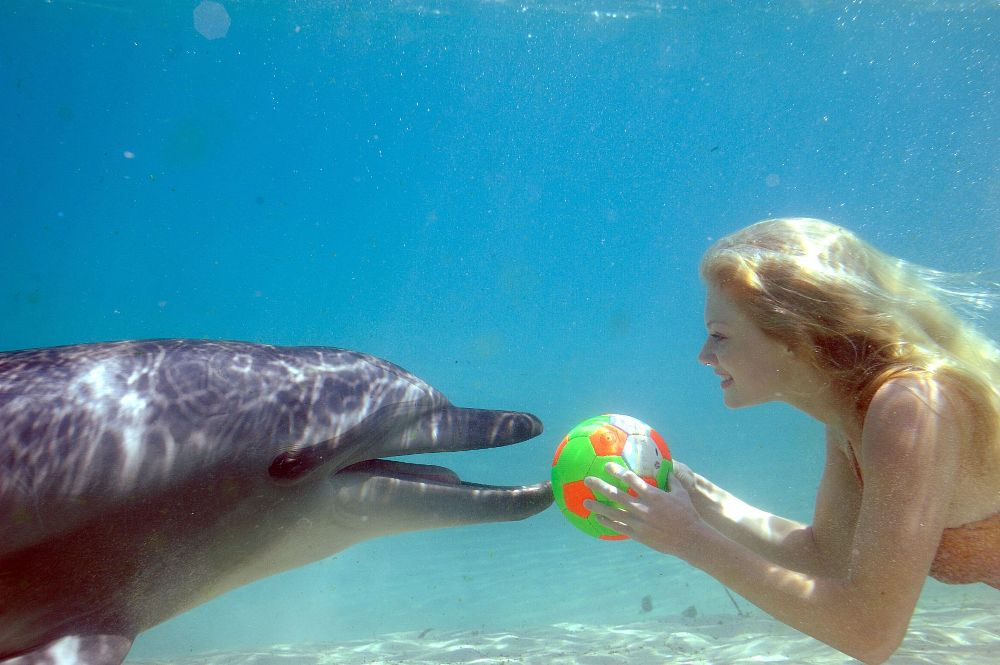 File:Rikki And a Dolphin.jpg