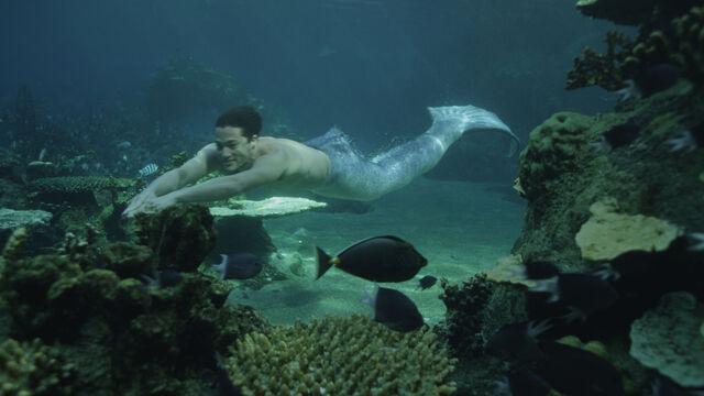 File:Zac swimming.jpg