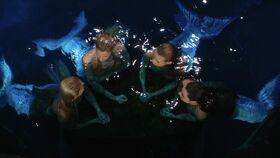 Mermaids and Aquata