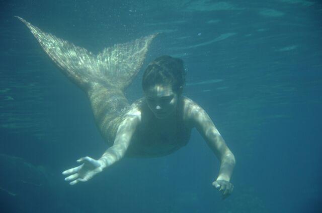 File:Cleo Swimming.jpg