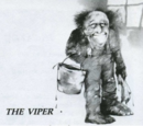 Scary Stories to Tell in the Dark: The Viper