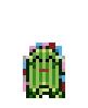 Pet-Cactus-Floral