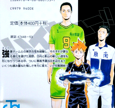 File:Volume 12 Back Cover.png