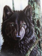 Black-wolf-sandi-baker