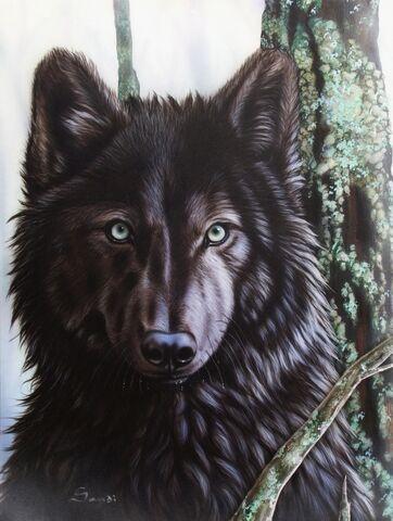 File:Black-wolf-sandi-baker.jpg