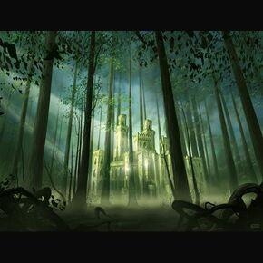 37 JOHN FOREST