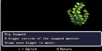 Big Seaweed