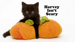 Harvey Isn't Scary