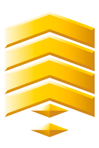 File:Gunnery Sergeant Grade Three.png
