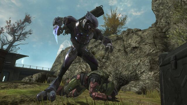File:Halo+-+Reach+Beta+-+Elite+Assassination.jpg