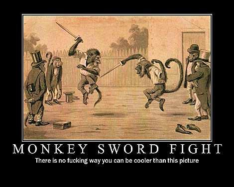 File:Monkey fight.jpg