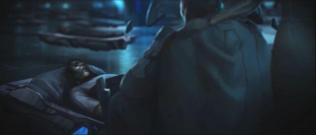 File:Halo-4-Forthencho.jpg