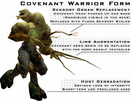 File:Warrior Form Covie2.png