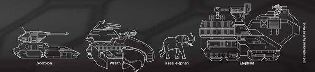 File:ElephantSizeComparison.jpg