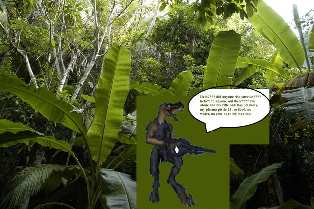 File:Lost in jungle.jpg