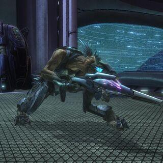 Jackal Cecchino in Halo: Reach armato di Fucile ad Aghi