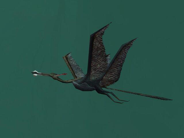 File:Dino-Bird closeup-Full.jpg