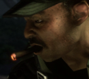 Sweet William Cigars