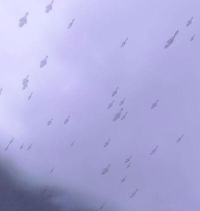Covenant Fleet