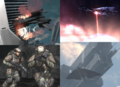 Orchid IV montage.png