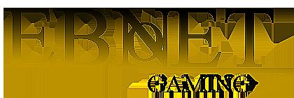 File:Ebon Net Gaming Logo.png
