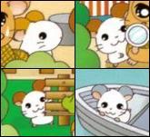 Baby-Hams1