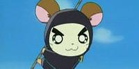 Nin-Ham the Ninja!