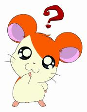 Hi-hamtaro-little-h-4e262a4d00997