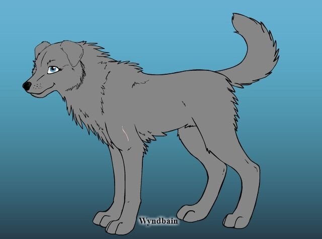 File:Wolf creator 2.jpg
