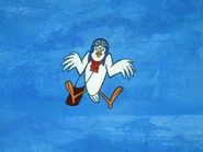 Yankee Doodle Pigeon (21)