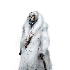 Siberian Witch.